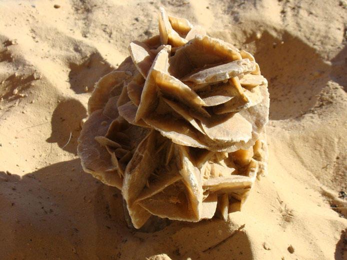 Минералы Сокровища Земли №21 - Роза пустыни